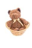 Brown-Teddybär in der weißen Isolierung Lizenzfreie Stockfotos