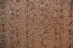 Brown tekstura lubi wąż skórę Obrazy Royalty Free