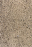 Brown texture background sand. Brown sand ground stones leaf grundge Royalty Free Stock Photos