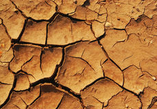 Brown texture of dry land, drought Stock Photography