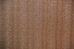 Brown texture like snake skin Royalty Free Stock Images