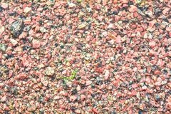Brown texture of wet red granite Gravel. Sand and stones in water on the floor background. The ground is covered with stone fractions royalty free stock photos