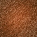 Brown textured background Stock Image