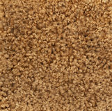 Brown Textured Background of Carpet Sample Royalty Free Stock Image