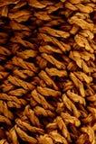 Brown Textured Braided Vimini Background Stock Image