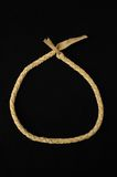 Brown Textured colar de couro trançada Fotos de Stock Royalty Free