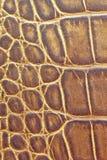 Brown textured o teste padrão de couro do fundo Imagem de Stock