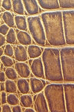 Brown textured rzemiennego tło wzór Obraz Stock