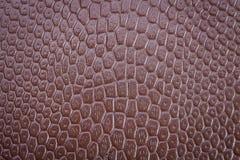 Brown textured skóry teksturę Obraz Royalty Free