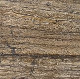 Brown textured stone Royalty Free Stock Photography