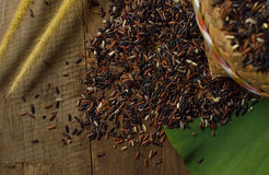Brown Thai`s rice 2 Stock Photo