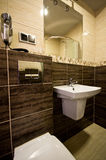 Brown theme bathroom. Elegant modern brown theme bathroom interior Royalty Free Stock Images