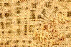 Brown thread that executes the stitches Stock Images