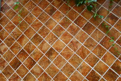 Brown tiles wall background. Brown tiles wall and leaf background Stock Image