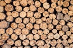 Brown Timber Stock Photos