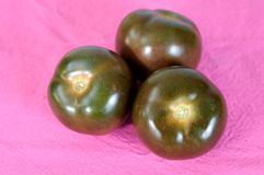 Brown tomatoes Stock Image