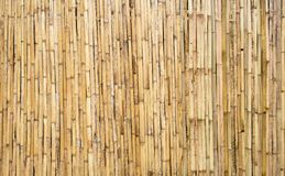 Free Brown Tone Bamboo Plank Fence Texture For Background Stock Photography - 146892262