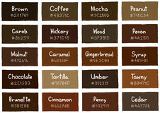 Brown Tone Color Shade Background avec le code et le nom Images libres de droits