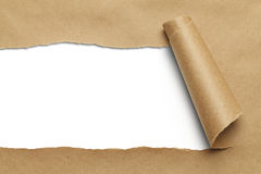 Brown Torn Paper. Brown Package Paper Rolled Up with White Background stock photography