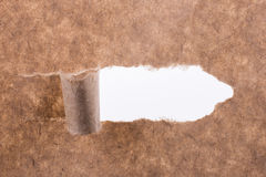 Brown torn paper. Piece of blank brown torn notepaper on a white background Royalty Free Stock Photography