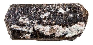 Brown Tourmaline Dravite kopalny gemstone odizolowywający Zdjęcie Royalty Free