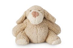 Brown toy bear Stock Photo