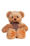 Brown toy bear with bow Royalty Free Stock Photo