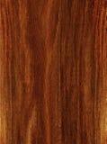Brown trä Royaltyfri Bild