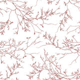 Brown tree branches seamless vector pattern Royalty Free Stock Photos