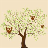 Stylized plants and many vector owls, festive coffee and leaves pattern on beige background vector illustration