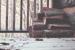Brown Tree Log on Brown Wooden Floor Royalty Free Stock Images