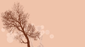 Brown tree on pink background Stock Image