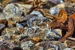 Brown Triceratops dinosaura odprowadzenie wśród skał obraz royalty free