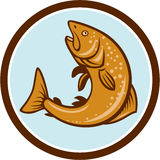 Brown Trout Jumping Circle Cartoon Royalty Free Stock Photos