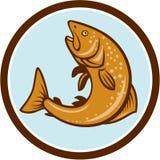 Brown Trout Jumping Circle Cartoon Royalty Free Stock Photos