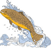 Brown Trout Swimming Up Turbulent Water Drawing. Drawing sketch style illustration of a brown trout fish swimming up on a turbulent water viewed from the side Stock Photo