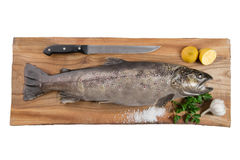 Brown trout. Very high resolution picture of a brown trout on a cutting board Stock Photography