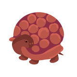 Brown turtle Stock Photography
