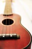 Brown ukulele Royalty Free Stock Photo