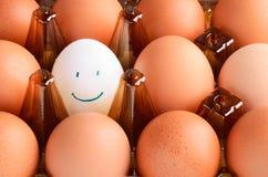 Brown und Eier mit einen weiße Lächeln im Behälter horizontal Lizenzfreies Stockfoto