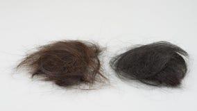 Brown und schwarzer Haarausfall stockfoto
