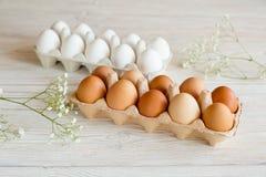 Brown und weiße Eier Stockfoto