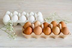Brown und weiße Eier Stockbild