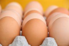 Brown und weiße Eier im Eierkarton lizenzfreie stockfotos