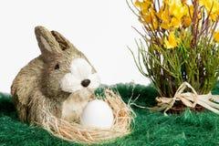 Brown und weißes Verzierungskaninchen mit Ei Stockfoto