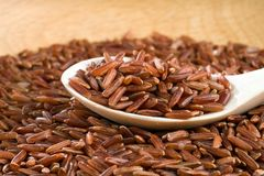 Brown unpeeled rice on a wooden spoon against a blurred background royalty free stock photo