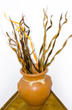 Brown vase with dry wood isolated Royalty Free Stock Photo