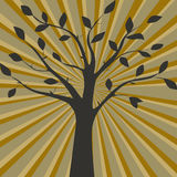 Brown vector illustration of tree silhouette Royalty Free Stock Photo