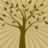 Brown vector illustration of tree silhouette Stock Image