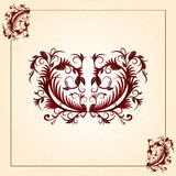 Brown vintage ornament pattern with border Royalty Free Stock Photos
